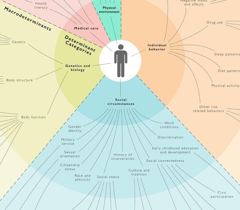 Health determinants poster