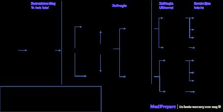 Generieke triage routes van zelfregie tot consult (inclusief aannames voor het ecosysteem als totaal)